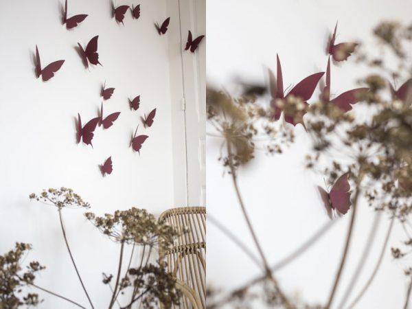 envolée de papillon marsala trendy little