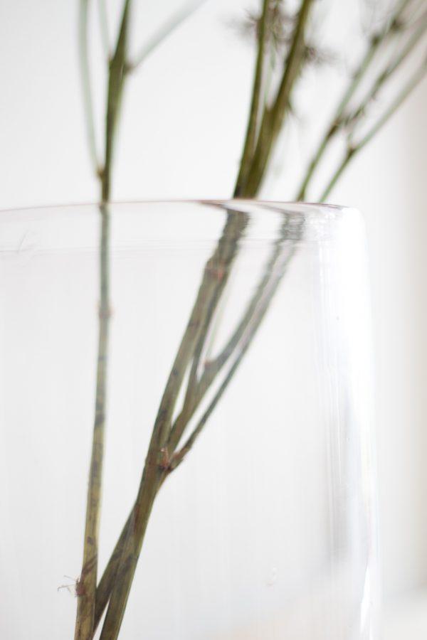 Pot en verre transparent TRENDY LITTLE