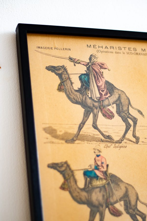 """Illustration, Image d'Épinal ancienne """"Méharistes militaires"""" encadrée dans un cadre vitré noir sur-mesure."""