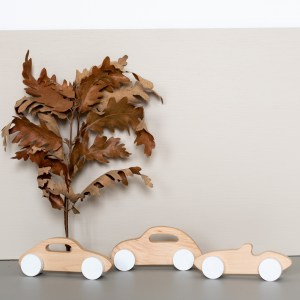 Petites voitures en bois Pinchtoys
